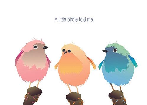 Three Colorful Birds. (Single Card)