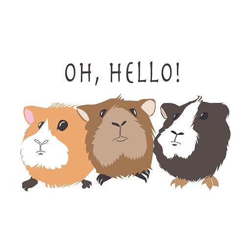 Oh Hello! Single Card