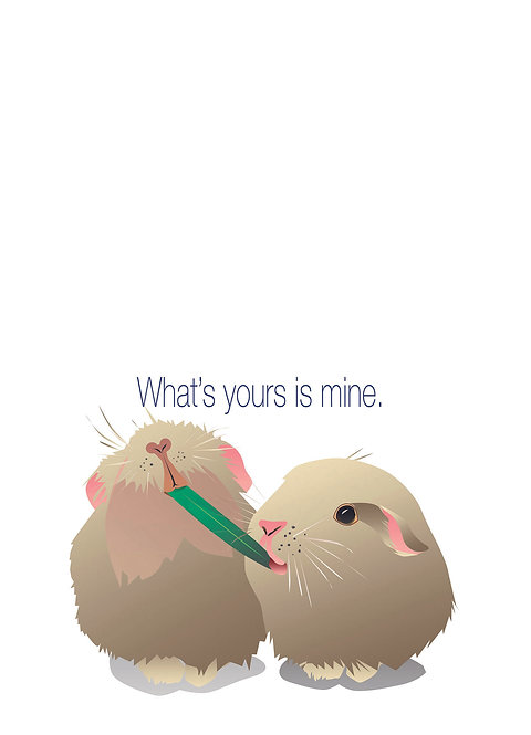 Guinea Pigs Sharing. (Single Card)