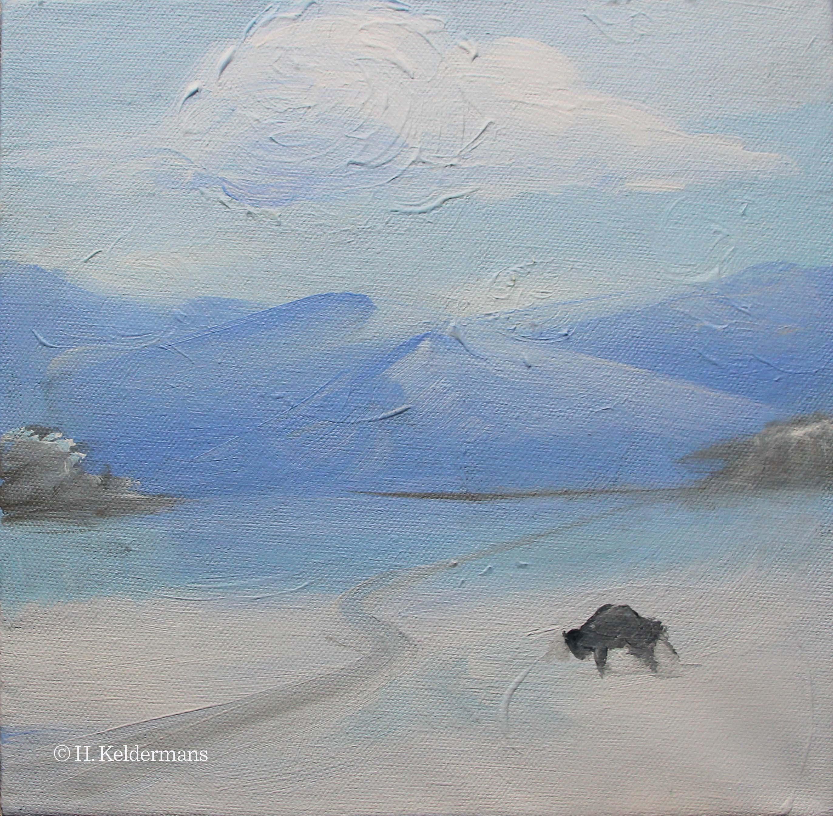 buffalo on the plain in winter.jpg