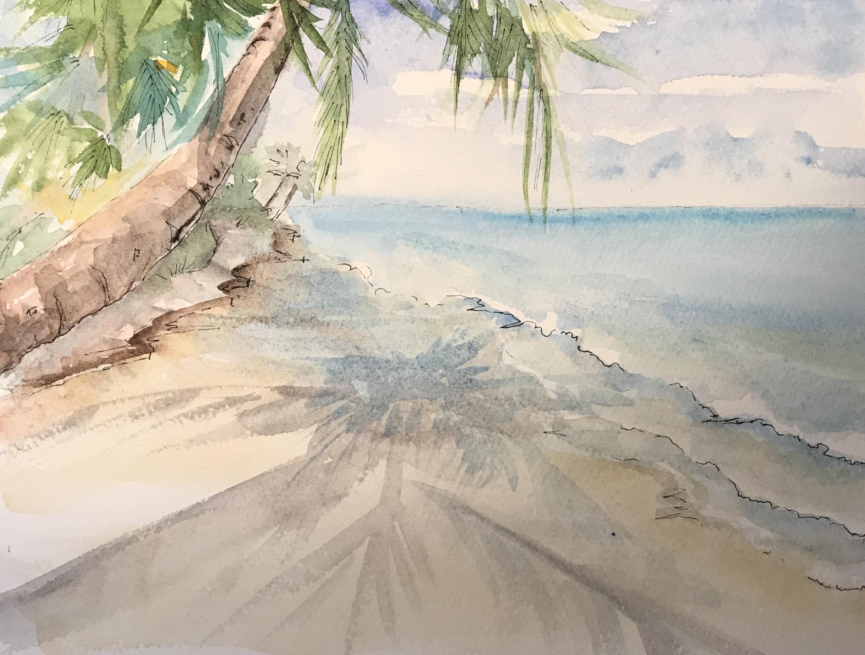 PalmTree & Beach.jpg