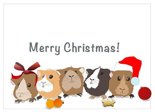 Merry Christmas Guinea Pigs (Set of 4)