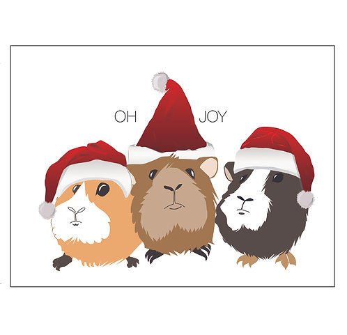 Oh Joy (3) Guinea Pigs (Single Card)