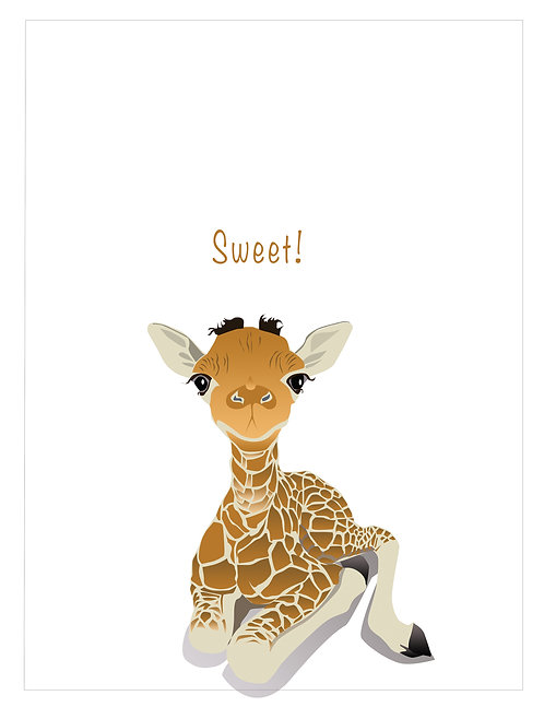 Baby Giraffe (Set of 4)