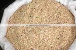 Mehlep Seeds