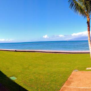 Ocean Front Lawn
