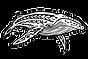 ass logo Clear_InPixio.png