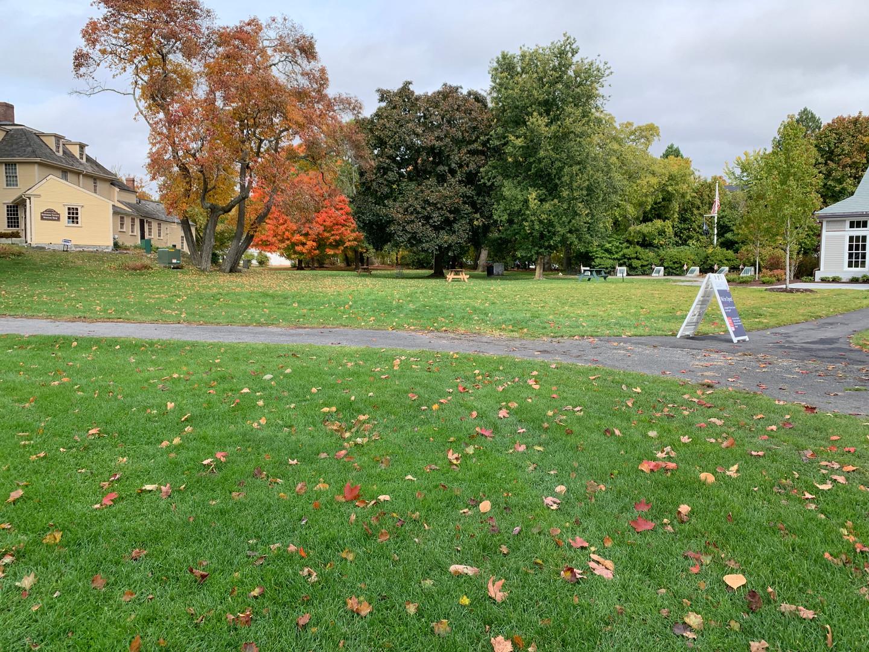 Visitors Center lawn