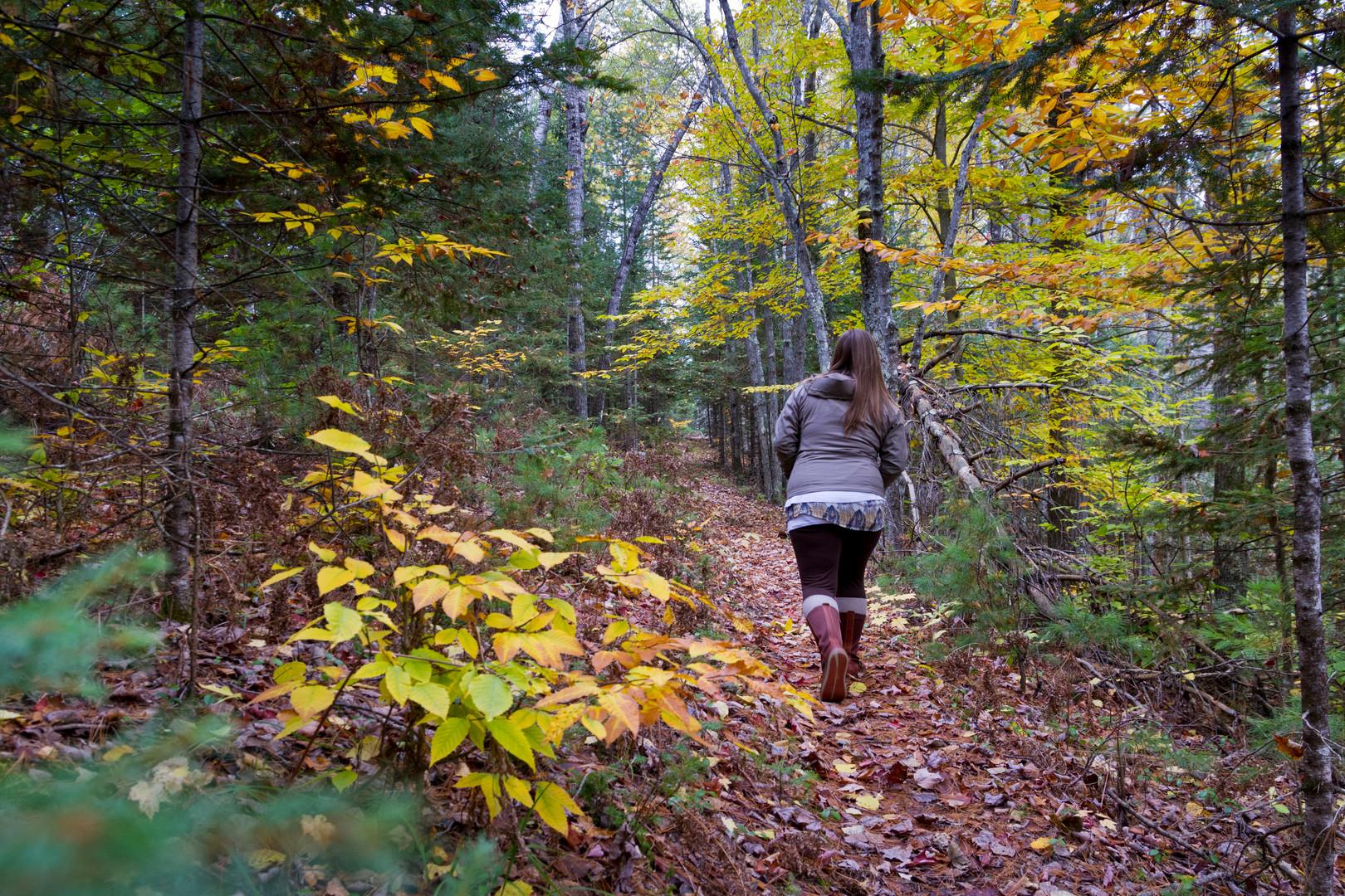 Hike Local Trails