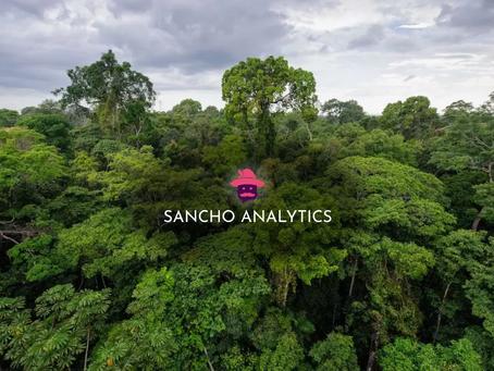 Sancho Analytics in the Amazon Rainforest