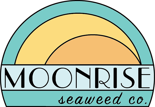 MOONRISE_new logo2_FINAL.png