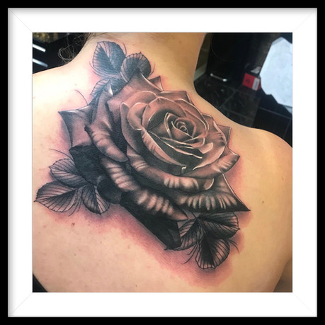 REALISTIC A4 SIZE ROSE