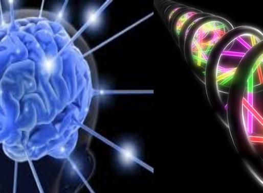 Influência da Radiestesia Genética nos padrões cerebrais
