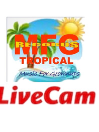 MFG Records Tropical