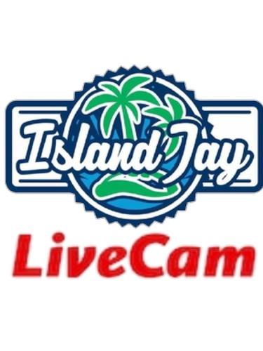 Island Jay Live Cam