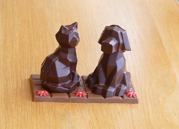 Le couple chat/chien