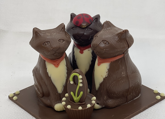 le trio de chats