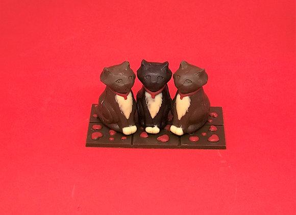 trio de chats amoureux
