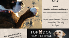 Newcastle's Top Dog Film Festival