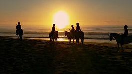 Beach horse riding on Diamond Beach