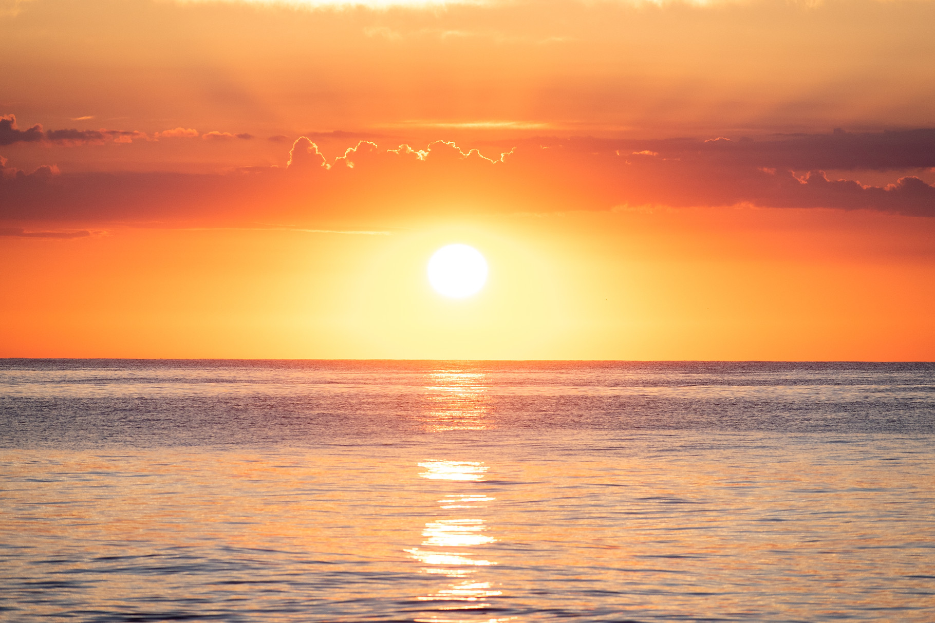 Sunrise OC Favorites-18.jpg