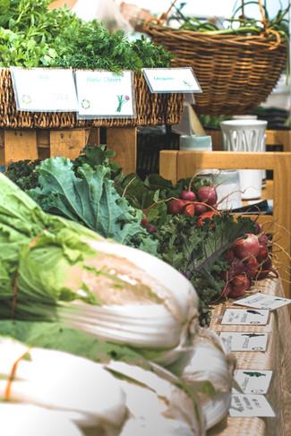 Farmer's Market - Produce, Lettuce, Herbs