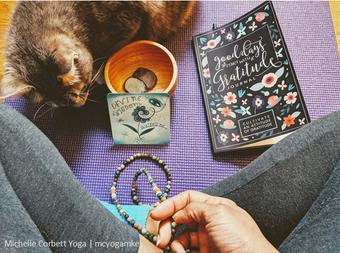 meditate kiwi gratitude journal divine w