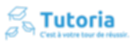 bluepale_logo_transparent.png