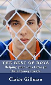 13875881_The Best of the Boys Kindle Cov