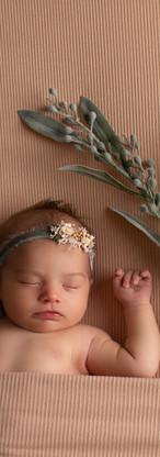 Remy Newborn