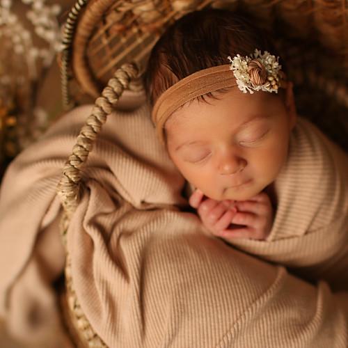 Wrenleigh Newborn