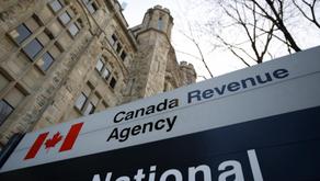 太惨了!加拿大华人女子回流中国却照常报税!结果悲剧了……