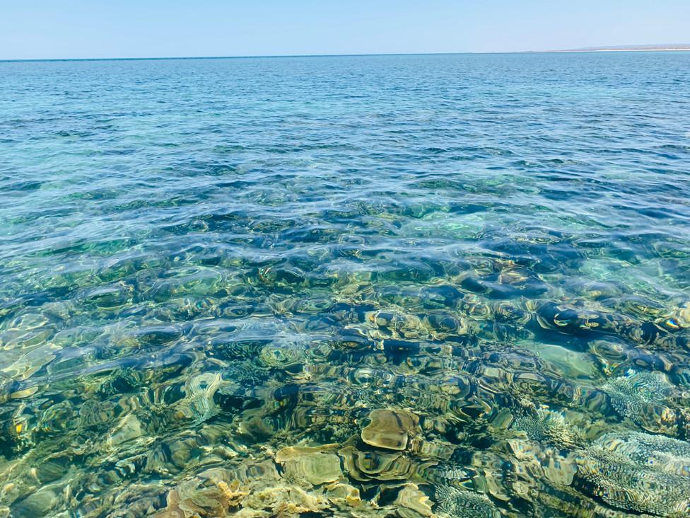 turquoise bay 2.jpeg