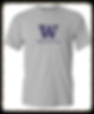 2016 UW water polo supporter shirt