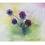 Thumbnail: אגרת בודדת