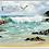 Thumbnail: מגבת חוף