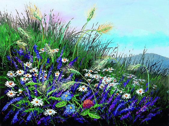 תחתיות לצלחות - ז' שדה פרחים