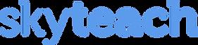 SKYTEACH логотип