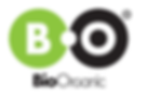 logo Bioorganic.png