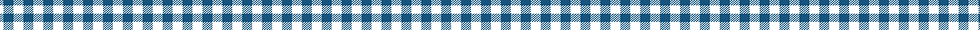 gingham strip-01-01.png