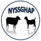nyssghap_logo.jpg