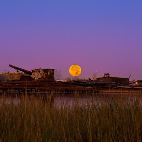 The Beaver Moon