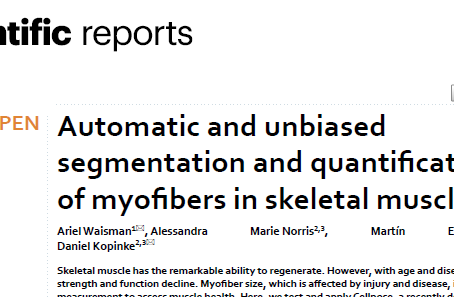 Our paper is finally published!