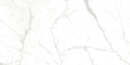 JQA61203P 1.jpg