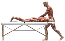 massage-therapy-2277454_1920.png