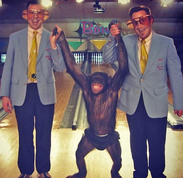 Chimp and Bowl
