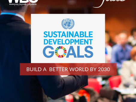 How can WBC Implement a Strategy to Help the United Nations Achieve the 17 SDGs?