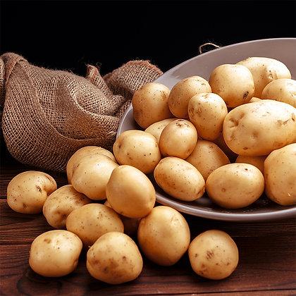 Pomme de terre Agatha | Provence | 1kg