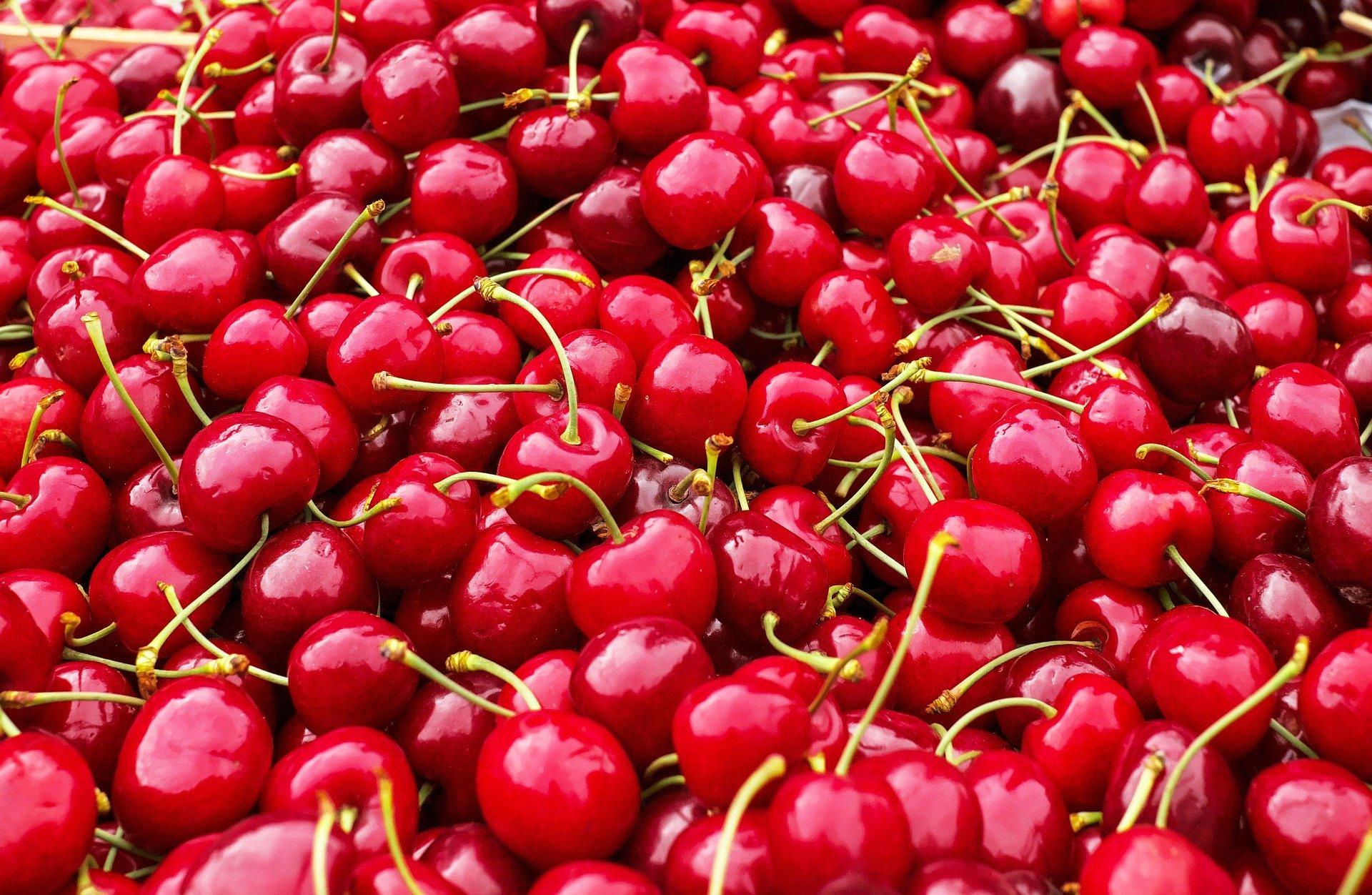 cherries-1465801_1920