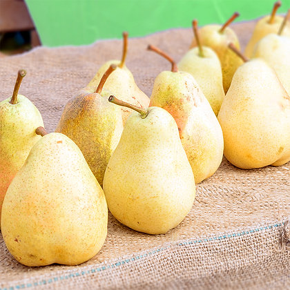 Poire williams | France | 500g